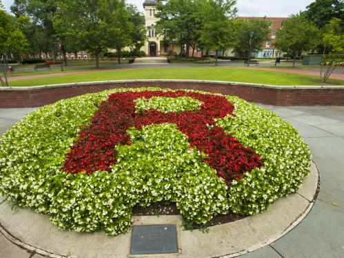 Rutgers Block R in Red Flowers